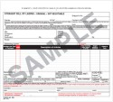 Straight Bills Of Lading - Universal Form 10-BLS-A 3